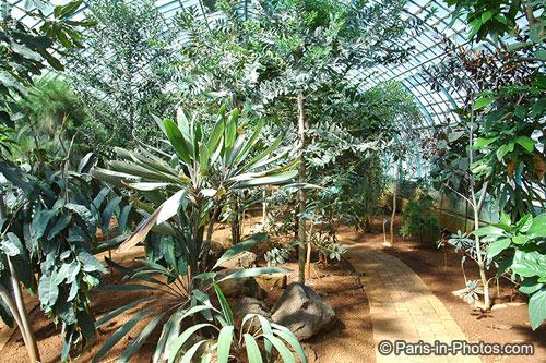 paris botanical gardens, jardin des serres, auteuil